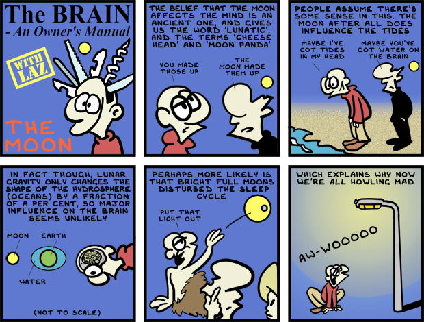 The Brain, An Owner's Manual - The Moon